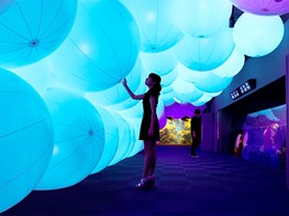 TeamLab's installations at Enoshima Aquarium in Japan