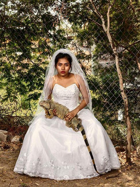 The Wedding Gift, Junchitán de Zaragoza by Pieter Hugo contemporary artwork