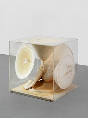Plexiglas Box by Takesada Matsutani contemporary artwork