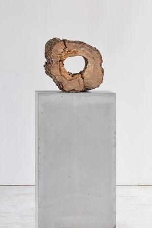 success by Stella Hamberg contemporary artwork