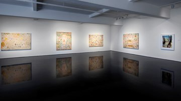 Contemporary art exhibition, Tim Johnson, Optic Nerve at Tolarno Galleries, Melbourne, Australia