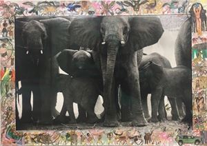 Eles at Buffalo Springs by Peter Beard contemporary artwork