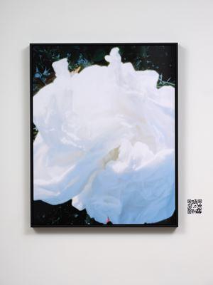rose garden by Conor Clarke contemporary artwork