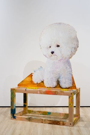 Bichon pensif by Tursic & Mille contemporary artwork