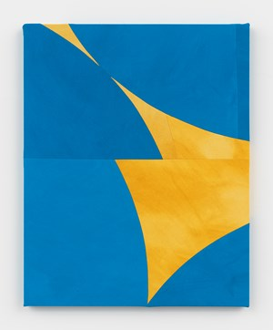 Blue Wings (Ochre Backlight) by Sarah Crowner contemporary artwork