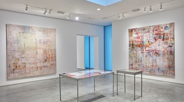 Contemporary art exhibition, Mandy El-Sayegh, MUTATIONS IN BLUE, WHITE AND RED at Lehmann Maupin, New York