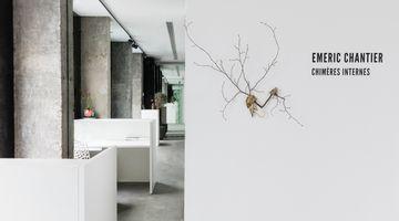 Contemporary art exhibition, Émeric Chantier, Internal Chimeras at A2Z Art Gallery, Paris