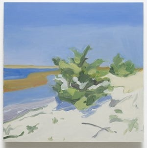 Long Island (with Vance) by Maureen Gallace contemporary artwork