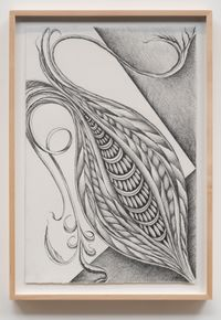 Fossil #9 by Faith Wilding contemporary artwork works on paper, drawing