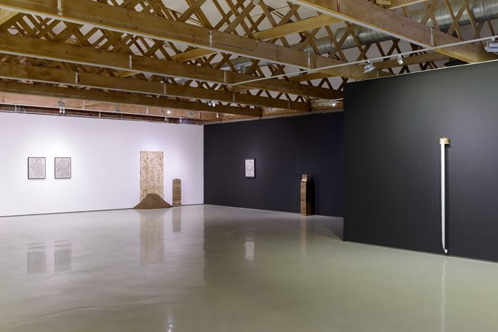 Exhibition view: Nolan Oswald Dennis, Options, Goodman Gallery, Cape Town (24 January–9 March 2019). Courtesy the artist and Goodman Gallery. Photo: Matthew Bradley.