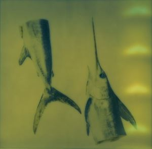 Silentium #28 by Euro Rotelli contemporary artwork