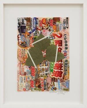 Aji Island by Lois Weinberger contemporary artwork