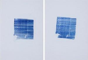 rain, 1 mm - III, IV by Tanya Goel contemporary artwork
