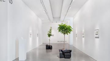 Contemporary art exhibition, Maria Loboda, Listen to me, little pig! at Galerie Thomas Schulte, Berlin