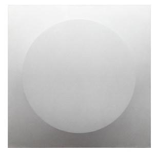 Un tondo by Turi Simeti contemporary artwork