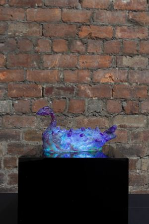 Sleepy Duck by Marco Giordano contemporary artwork