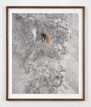 Rainbow Herbicides #1 by Thu Van Tran contemporary artwork