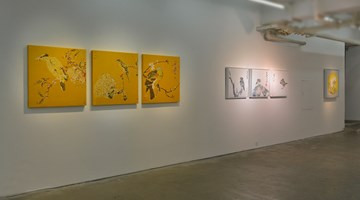 Contemporary art exhibition, Yang Mian, Yang Mian at A Thousand Plateaus Art Space, Chengdu