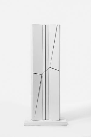 TOUR DES FINANCES, projet non réalisé pour l'habillage du noyau béton by Francis Dusepulchre contemporary artwork