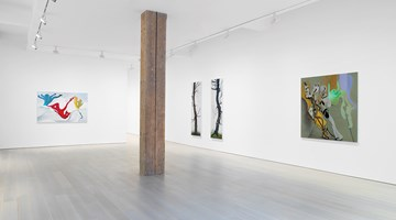 Contemporary art exhibition, Inka Essenhigh, Solo Exhibition at Miles McEnery Gallery, 525 West 22nd Street, New York