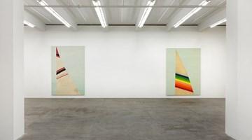 Contemporary art exhibition, Fredrik Vaerslev, Merman at Andrew Kreps Gallery, 537 West 22nd Street, New York