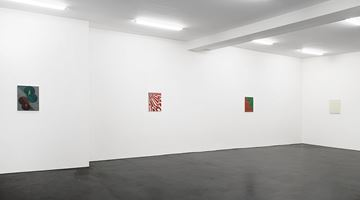 Contemporary art exhibition, Tomma Abts, Tomma Abts at Galerie Buchholz, Cologne