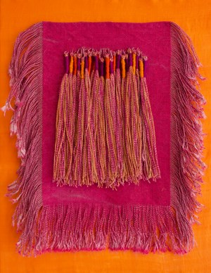 Fringe on Silk #1 by Emma Fitts contemporary artwork