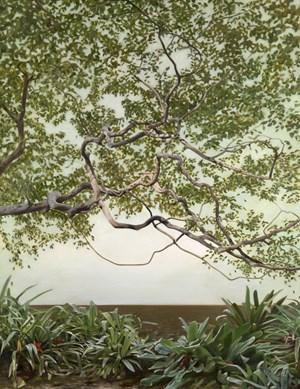 Shadow Tree by Deidre But-Husaim contemporary artwork