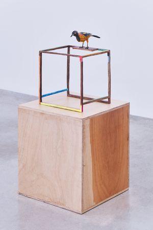 O exótico by Efrain Almeida contemporary artwork