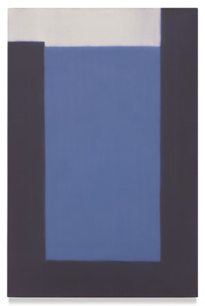 736 (room) by Suzanne Caporael contemporary artwork