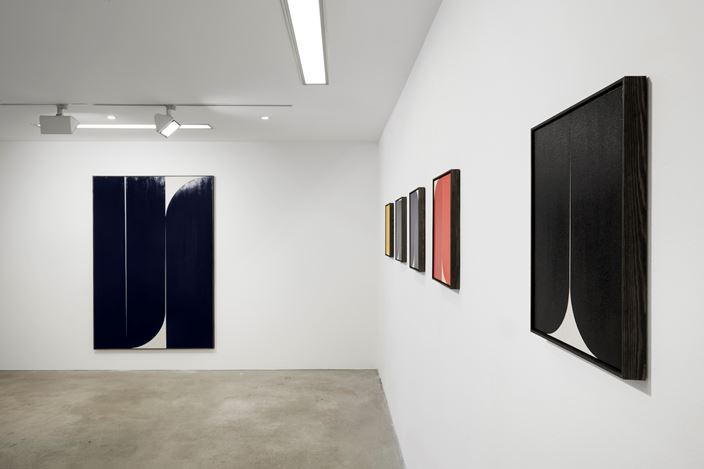 Exhibition view: Johnny Abrahams, Making Flowers Alive, Choi&Lager Gallery, Cologne (28 February–26 April 2020). Courtesy Choi&Lager Gallery.