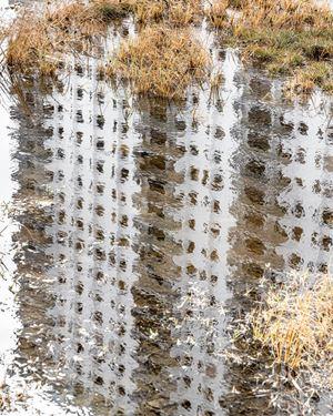 Building Reflection at King Tide, Hollywood, Florida by Anastasia Samoylova contemporary artwork