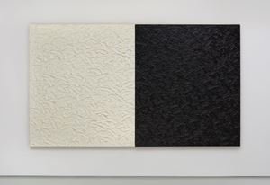 Abstract Diptych #24 (Titanium-Zinc White in safflower oil/Mars Black in linseed oil) by James Hayward contemporary artwork