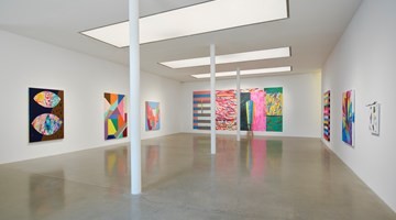 Contemporary art exhibition, Sarah Cain, Wild Flower at Timothy Taylor, London