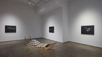 Contemporary art exhibition, Julian Charrière, Towards No Earthly Pole at Sean Kelly, New York, USA
