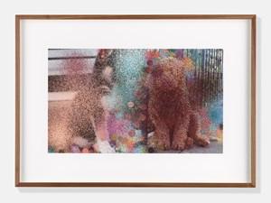 Dogs III by Hilary Lloyd contemporary artwork