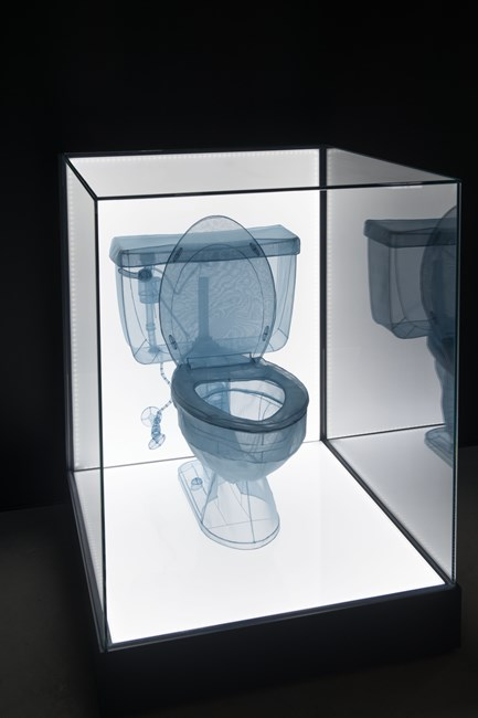 Specimen Series: 348 West 22nd Street, APT. New York, NY 10011, USA - Toilet by Do Ho Suh contemporary artwork