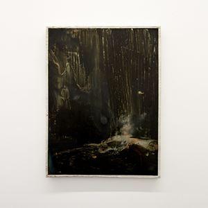 Shiny over dirt by Tyne Gordon contemporary artwork