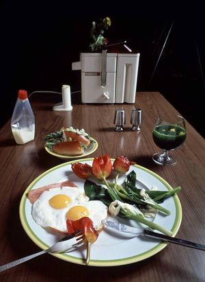 Mr. O's Breakfast by Ohtsubo Kosen contemporary artwork