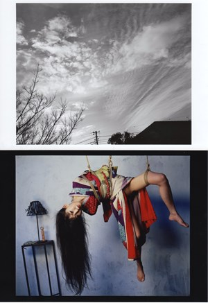 It Was Once Paradise by Nobuyoshi Araki contemporary artwork
