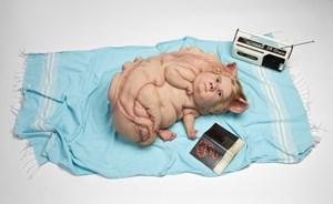 Teenage Metamorphosis by Patricia Piccinini contemporary artwork