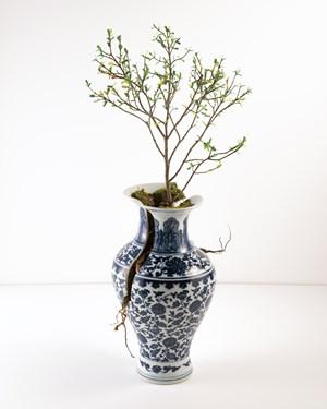 Vase IV by Émeric Chantier contemporary artwork