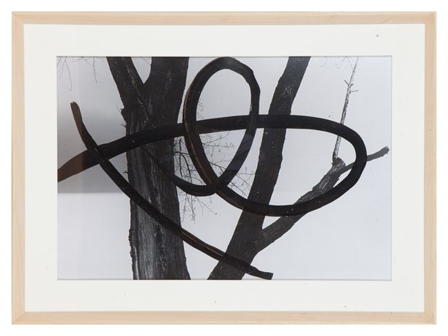 2019-SS-167-F002 by Birdhead contemporary artwork