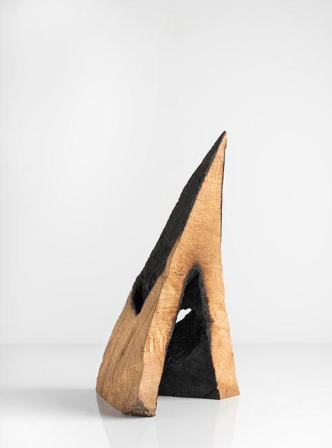 Hood by David Nash contemporary artwork