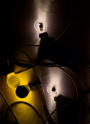 Four light bulbs, yellow and clear by João Penalva contemporary artwork