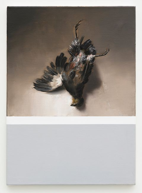 Still life (self portrait as a dead bird) by Mircea Suciu contemporary artwork