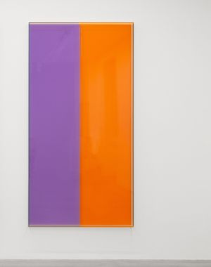 Colormirror violet orange Bonn by Regine Schumann contemporary artwork