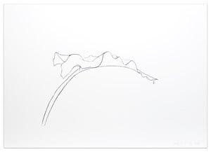 Leaf V by Ellsworth Kelly contemporary artwork print