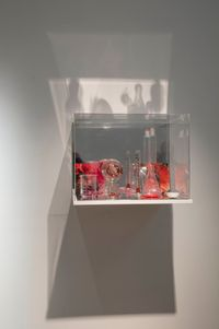 What Colour is the Sacred? (Red) by Janet Laurence contemporary artwork sculpture