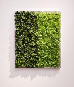 Green on Green (Medium) by Dani Marti contemporary artwork